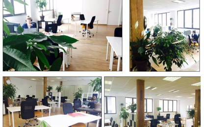 Open Space  12  postes Coworking Paris 75011